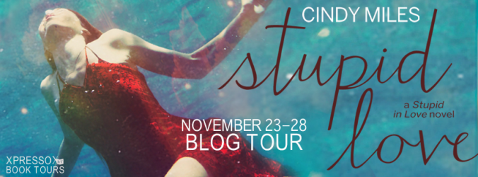 StupidLoveTourBanner2
