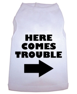 HereComesTroubledogteeshirts